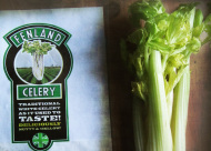How to keep celery fresh for even month?