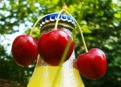 How to easily place the cherries in a bottle.
